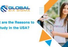 Best consultancy for USA Education in Hyderabad